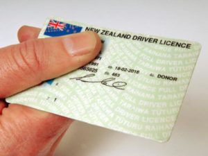 New zealand driver licence